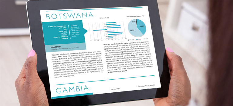 Our Africa-focused research consulting, publishing and content marketing services ensure informed decision-making.