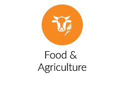 Food-&-Agriculture